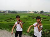彰化花壇景點三春老樹風華再現彩繪稻田吸引遊客拍照留念